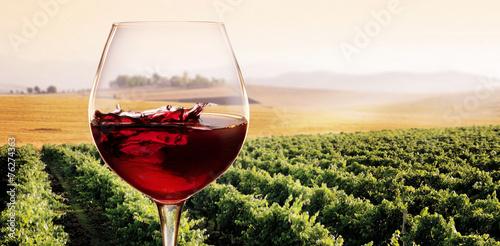 Bicchiere di Vino rosso in Vigneto Fototapete