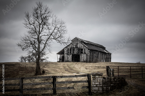 Photographie Deteriorating barn and tree on an overcast winter day