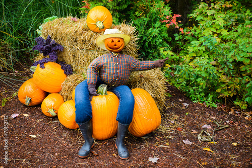 Canvas Print Pointing Scarecrow Sitting on a Pumpkin