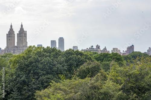 Valokuvatapetti New York - Panorama da Central Park