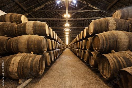 Canvas Print Wine cellar, Porto