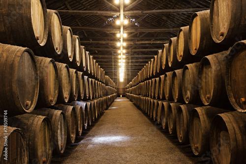 Billede på lærred Wine cellar, Porto
