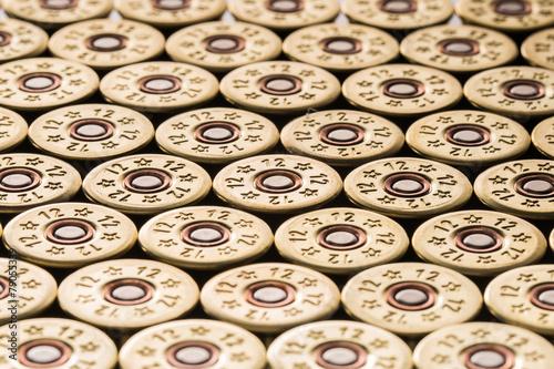Canvas Print 12 gauge shotgun shells used for hunting