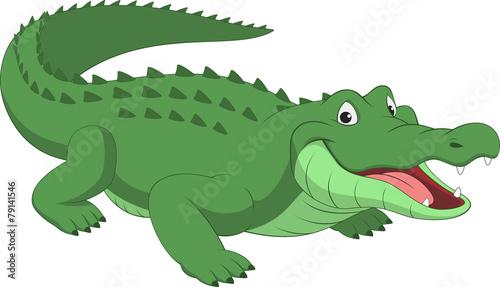 Fotografia Funny crocodile