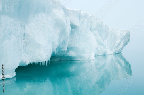 Stampa su Tela Glaciers and icebergs