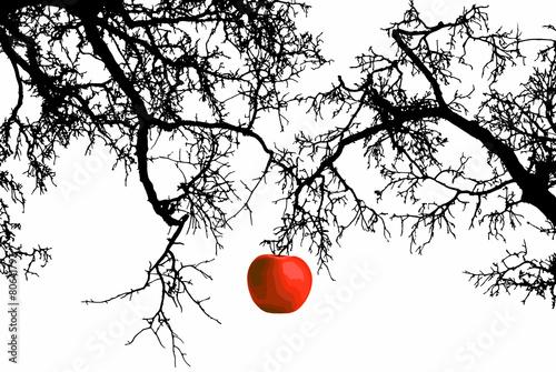 Obraz na płótnie Apple on a branch