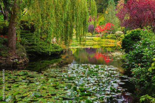 Fototapeta Quiet pond