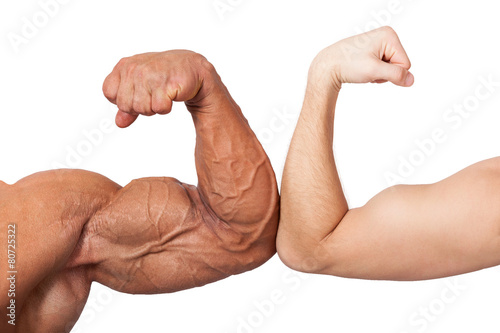 Canvas Huge and small biceps.