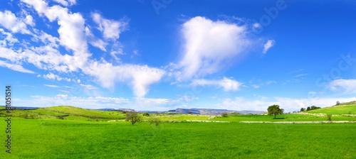 Panorama con verdi colline e un cielo azzurro con nuvole