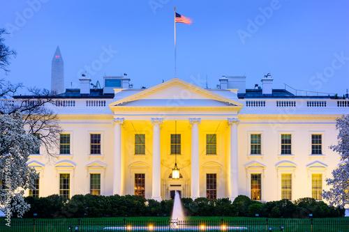 Carta da parati White House in Washington, D.C.
