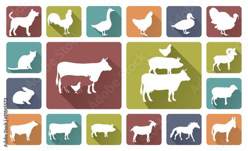 Fotografia farm animals silhouettes isolated on white