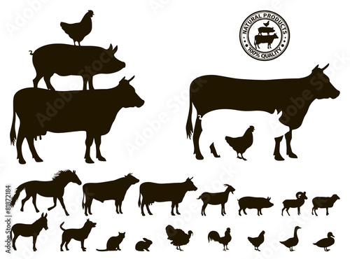 Stampa su Tela vector farm animals silhouettes isolated on white