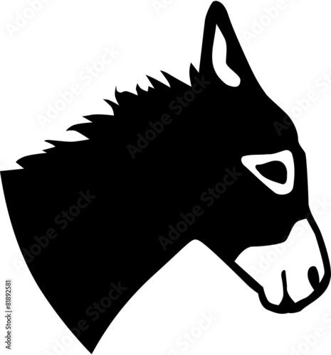 Carta da parati Real donkey head