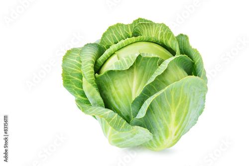 Obraz na plátne Cabbage isolated on white background
