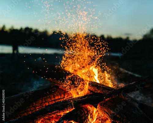 Fotomural magic fire