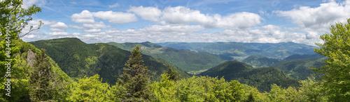 panorama des Vosges #83464990