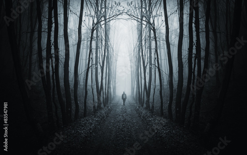 Naklejka na szafę Mroczna ścieżka w dziwnym ciemnym lesie z mgłą