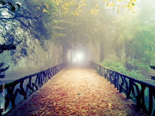 Fotografija A luz do outro lado da ponte - ambiente de misticismo e de mistério