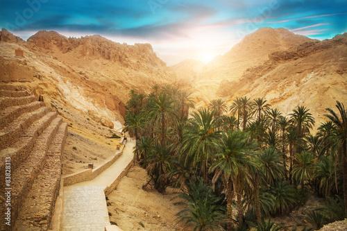 Obraz na plátně Mountain oasis Chebika, Sahara desert, Tunisia, Africa