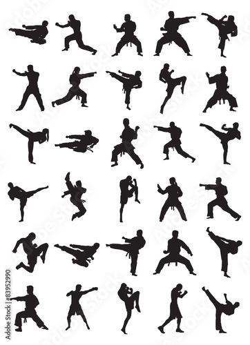 Canvas Print Martial Art Silhouettes