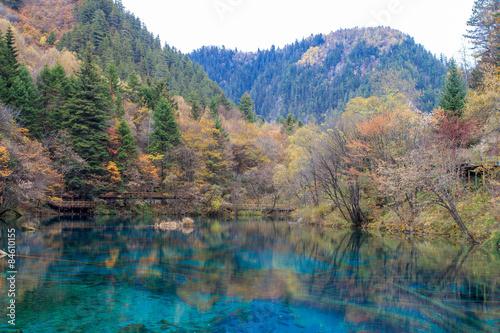 colorful mirror lake in the colorful forest, Jiuzhaigou