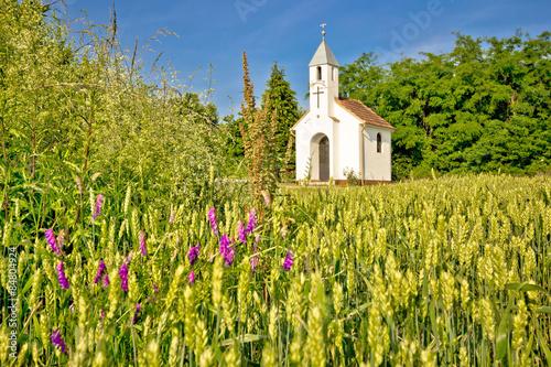 Catholic chapel in rural agricultural landscape Fototapete