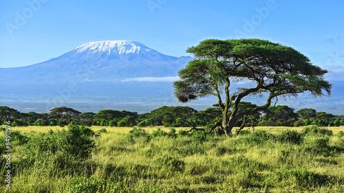 Mount Kilimanjaro #84911576