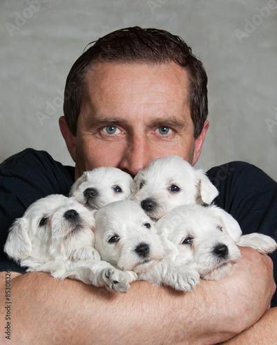 Fotografia man with puppies