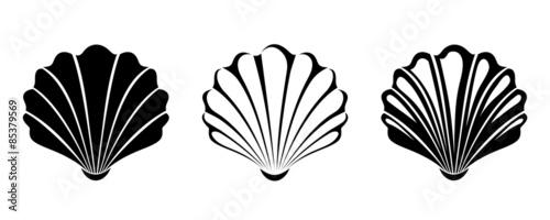 Fotografía Set of sea shells. Vector black silhouettes.