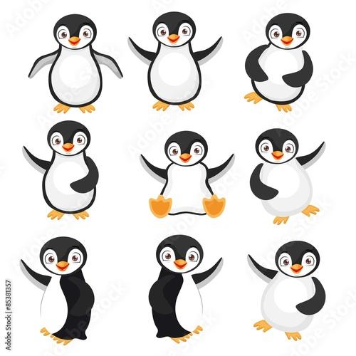 Black Penguins