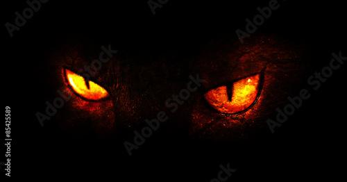 Vászonkép Demonic eyes