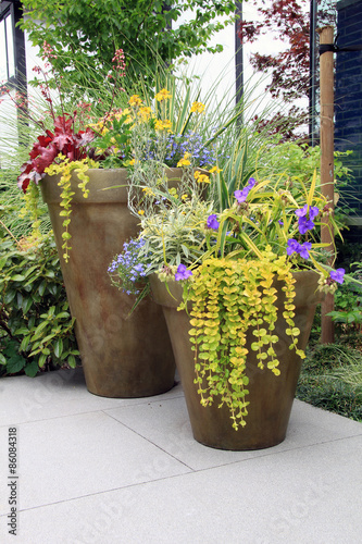 Perennial flower containers