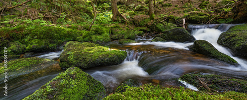 Photo brook in forest (Jelení potok, Sumava, Czech republic, Europe)