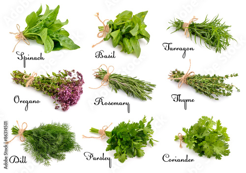 Collection of cooking herbs and spices. Fototapet