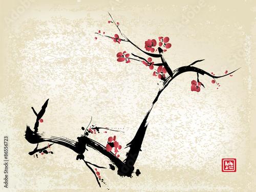 cherry blossom ink painting Fototapeta