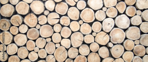 Fotografie, Obraz wallpaper wood log