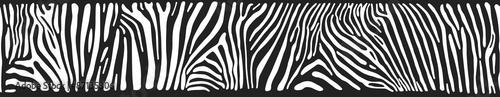Vector background with zebra skin #87135306