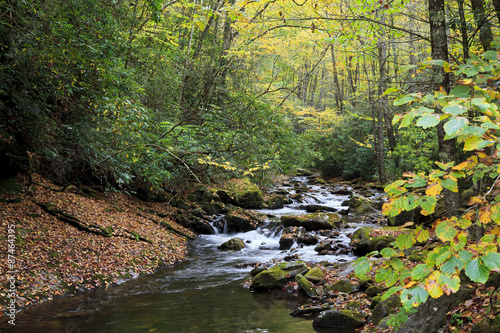 Canvas Courthouse Creek in North Carolina Autumn