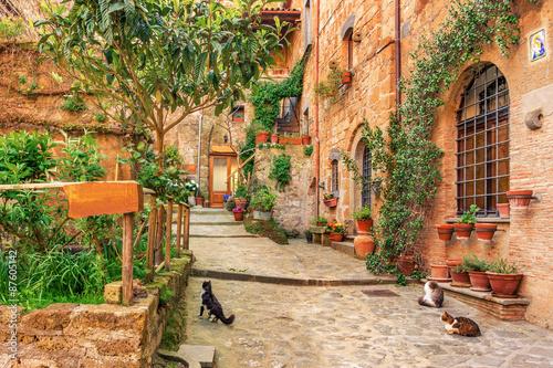 Fototapeta premium Piękna aleja w starym mieście Toskania