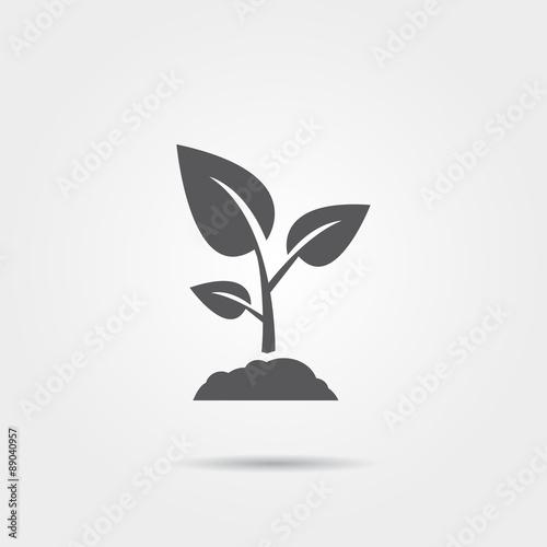 Vászonkép Sprout icon