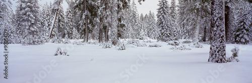 Winter Snowstorm in the Lake Tahoe Area, California #90084129