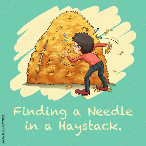 Fotografia Idiom finding a needle in a haystack
