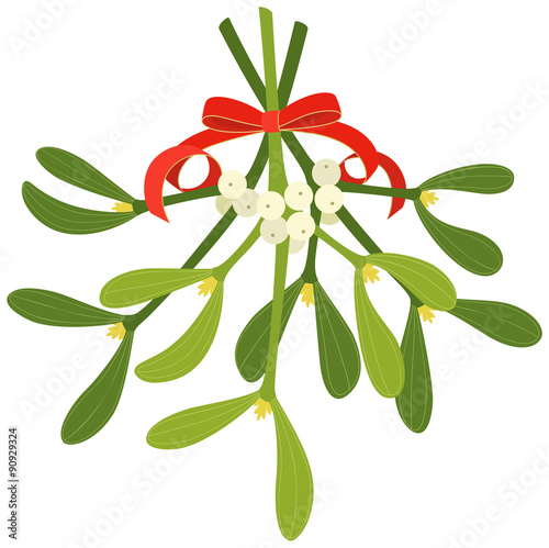 Stampa su Tela Mistletoe with red bow and curly ribbon, isolated on white background