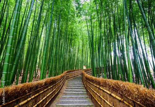 Path to bamboo forest, Arashiyama, Kyoto, Japan #91378588
