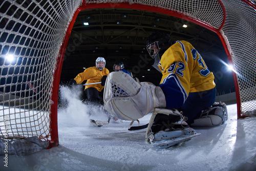 Cuadros en Lienzo ice hockey goalkeeper
