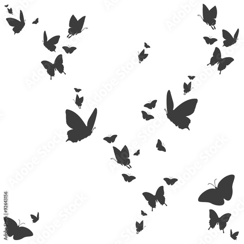Silhouetten von Schmetterlingen #92643156