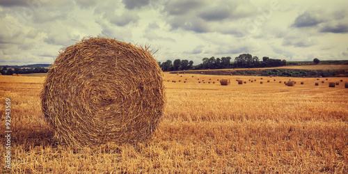 Fotografie, Tablou Haystack in the field