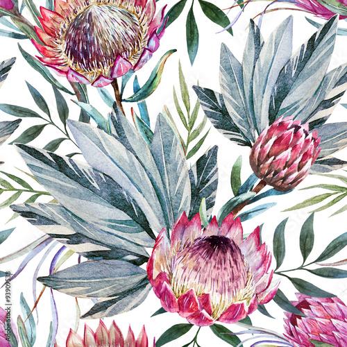 Fototapeta Tropikalne kwiaty protea na białym tle do pokoju