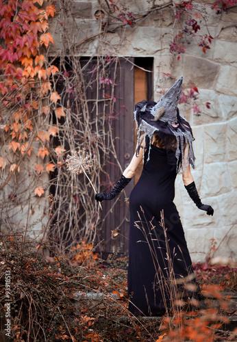 Fototapeta premium Halloween day