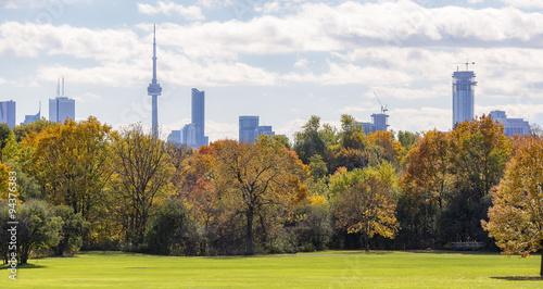 Autumn urban  landscape with Toronto skyline on the background